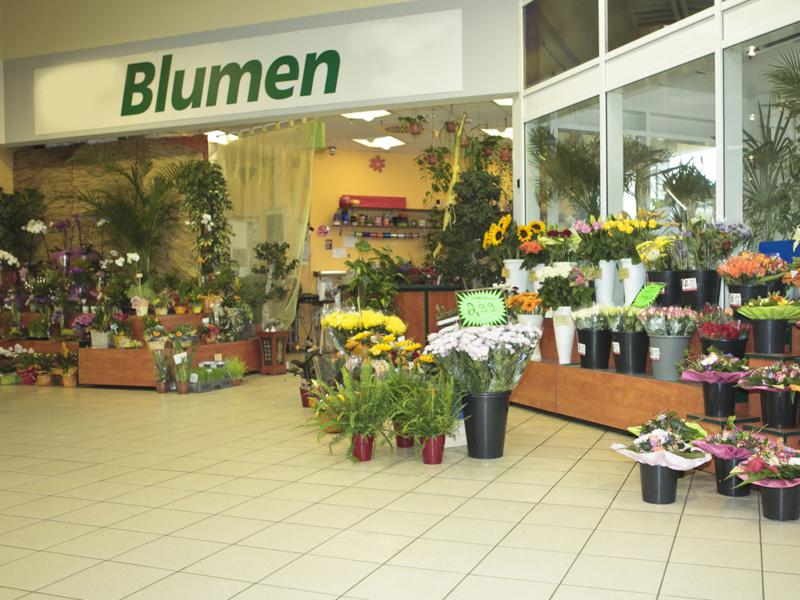 blumen center dortmund